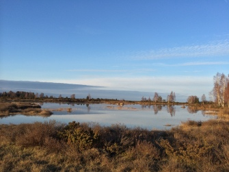 Stora Alvaret i trakterna kring Penåsa